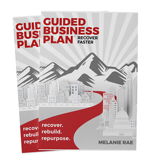 Guided Business Plan book